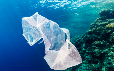 FASHION'S WAR ON PLASTIC POLLUTION